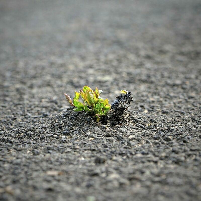 Teerhaltiger Straßenaufbruch