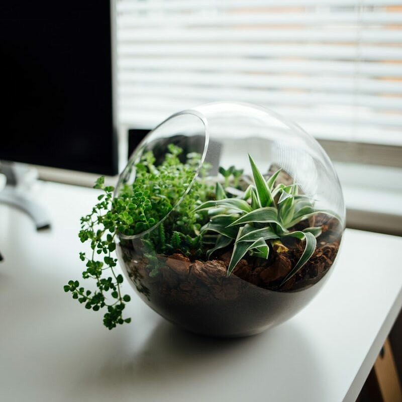 Tipps für mehr Nachhaltigkeit im Büroalltag