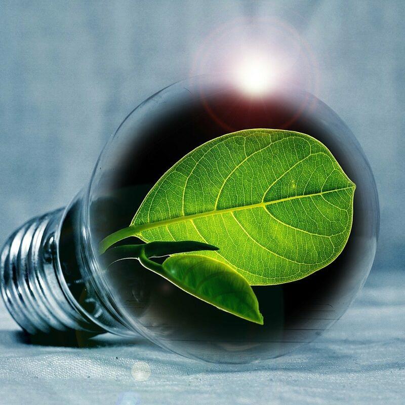 Grüne Geschäftsmodelle