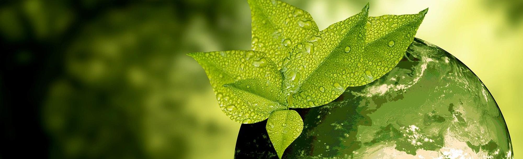 Warum ist eine nachhaltige Kreislaufwirtschaft so wichtig?