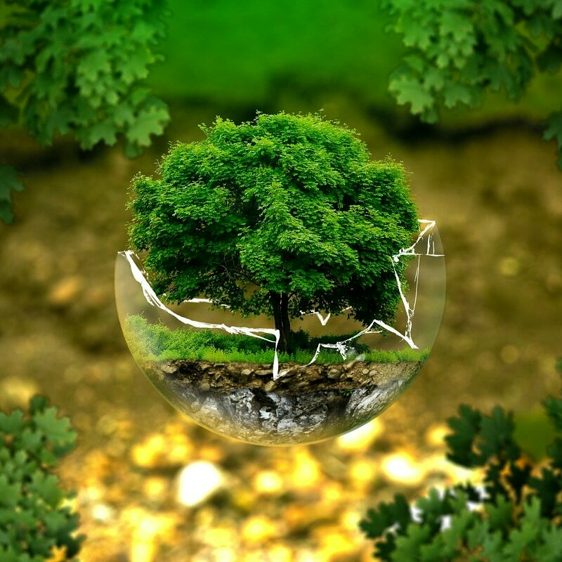 Maßnahmen zur nachhaltigen Kreislaufwirtschaft für Unternehmen